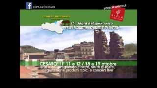 SPOT TV COMUNE DI CESARO'